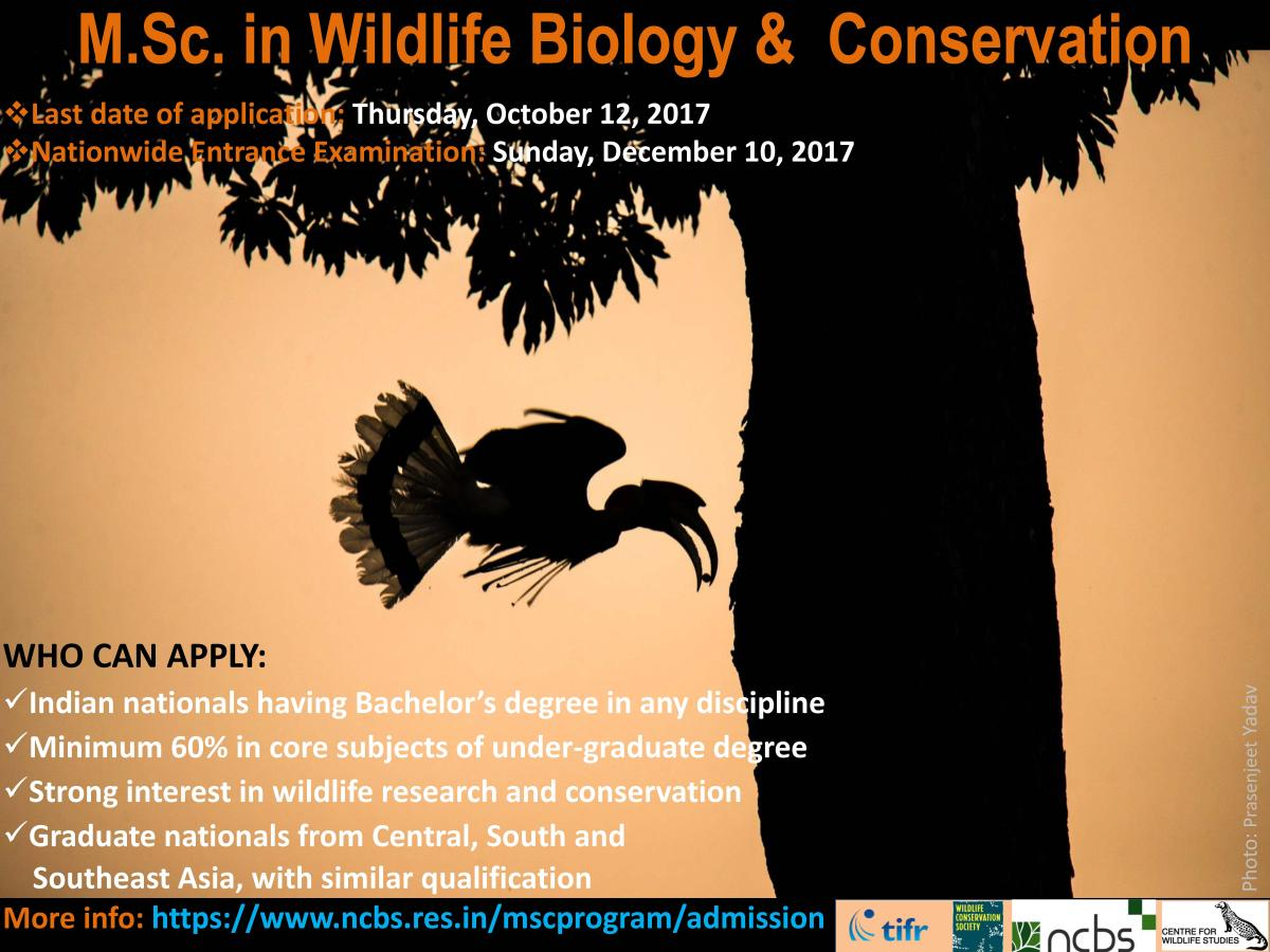 Essay writing for esl students the lodges of colorado for Fish and wildlife management degree