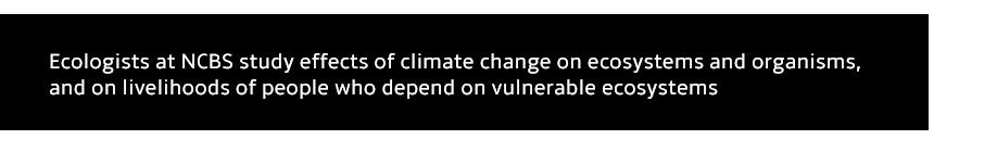 EE_ClimateChangeEcosystemsPeople.png